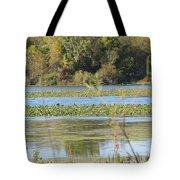 Tri-ply Swamp Tote Bag