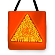Triceratium Tote Bag by M. I. Walker