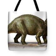 Triceratops Prorsus, A Prehistoric Era Tote Bag
