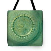 Trichodina Sp Tote Bag