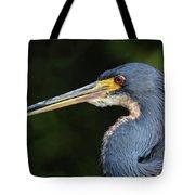 Tricolor Heron Portrait Tote Bag