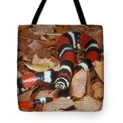 Tricolor Hognose Snake Tote Bag