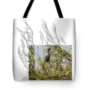 Tricolored Heron Tote Bag