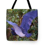 Tricolored Heron In Flight Tote Bag