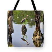 Tricolored Reflection Tote Bag