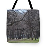 Trinity Park Ft Worth Tx Tote Bag