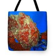 Tropical Fish Stone-fish Tote Bag