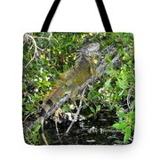 Tropical Iguana Tote Bag