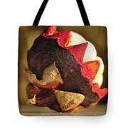Tropical Mangosteen - The Medicinal Fruit Tote Bag by Kaye Menner