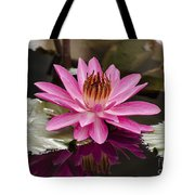 Tropical Night Flowering Water Lily  Rose De Noche IIi Tote Bag