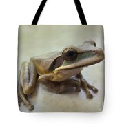Tropical Tree Frog II Tote Bag