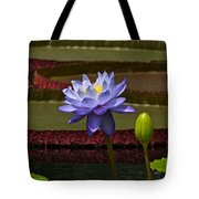 Tropical Water Lilies Tote Bag