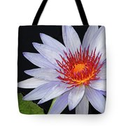 Tropical Waterlily Tote Bag