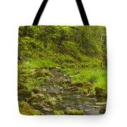 Trout Run Creek 4 Tote Bag