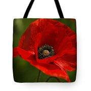 Truly Red Oriental Poppy Wildflower Tote Bag