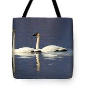 Trumpeter Swan Pair Tote Bag