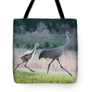 Trying To Keep Up Tote Bag