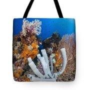 Tube Sponge On Coral Reef In Raja Tote Bag