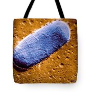 Tuberculosis Bacillum Tote Bag by Science Source