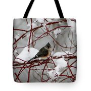 Tuft Winter Tote Bag