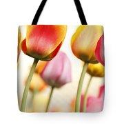 Tulip - Impressions 1 Tote Bag