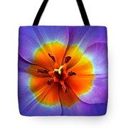 Tulip At Sunset Macro Tote Bag
