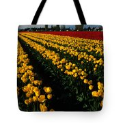 Tulip Fields Forever Tote Bag