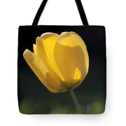 Tulip Flower Series 1 Tote Bag