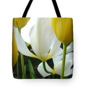 Tulip Flowers Art Prints Yellow White Tulips Floral Tote Bag by Baslee Troutman