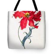 Tulip Perroquet Rouge Tote Bag