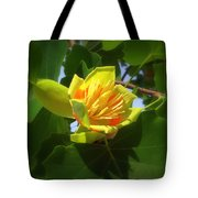 Tulip Poplar Flower Tote Bag