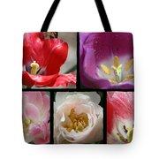 Tulip Sampler Tote Bag