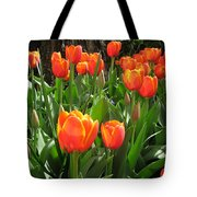 Tulip Time Tote Bag