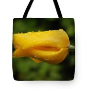 Tulip With Raindrops 2 Tote Bag