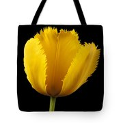 Tulipa Jaune Tote Bag by Martin Williams