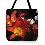 Tulips And Daisies Tote Bag