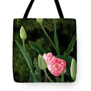 Tulips And Evergreen Tote Bag