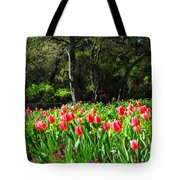Tulips And Woods Tote Bag