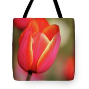 Tulips Gone Wild Tote Bag