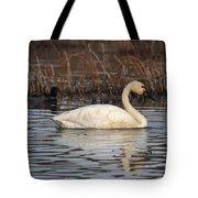 Tundra Swan Tote Bag