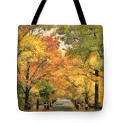Tunnel Of Color Tote Bag