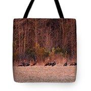 Turkey - Wild Turkey - Seventeen Longbeards Tote Bag