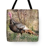 Turkey In The Straw Tote Bag