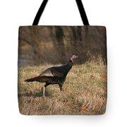 Turkey Run Tote Bag