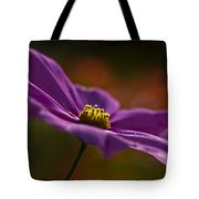 Turn Your Face To The Sun Tote Bag