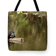 Turtle Climb Tote Bag