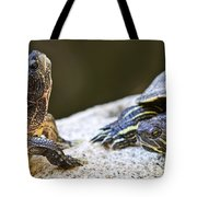 Turtle Conversation Tote Bag by Elena Elisseeva