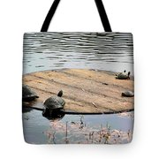 Turtle Family Beach Tote Bag by Suzanne Gaff
