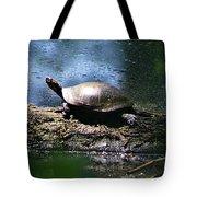 Turtle I Tote Bag