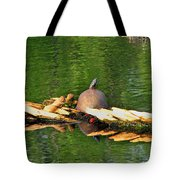 Turtle Sunbathing  Tote Bag